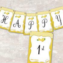 Lemonade Pennant Banner