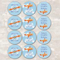 Airplane Cupcake Picks