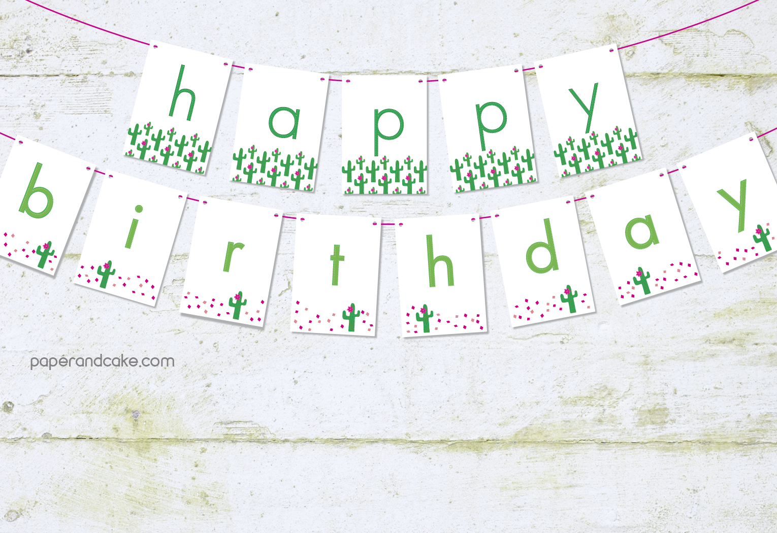 Cute Cactuses Happy Birthday Pennant Banner Paper And