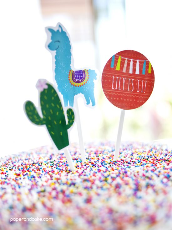 Alpaca Birthday Party Ideas