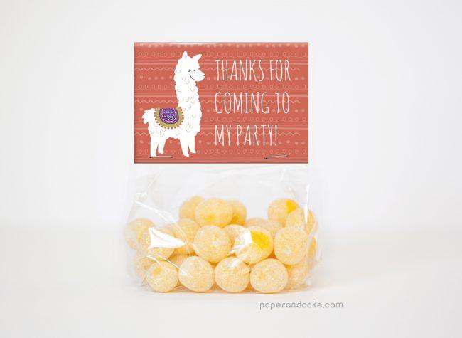 alpaca party favor kit